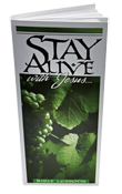 Stay Alive Lessons