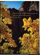 Nature Pocket Folder Trees (set of 5)