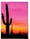 Nature Pocket Folder Desert (set of 5)