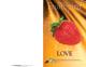 Fruit of the Spirit Bulletin Covers-Love (100 Pack)