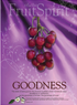 Fruit of the Spirit Bullein Cover-Goodness