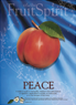 Fruit of the Spirit Bullein Cover-Peace