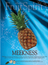 Fruit of the Spirit Bullein Cover-Meekness