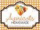 Gingham Quart Labels-Apricot